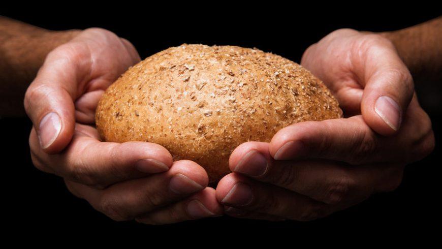 Jadłodzielnia Zamość – Spichlerz Brata Alberta